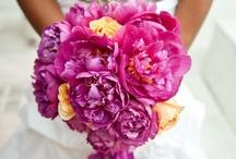Bouquets / Our favorites!