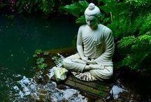 ♡ Oriental Zen Garden / Japanese - Zen - Gardens