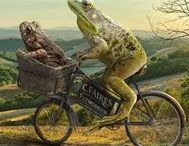 Theme-Frog and Toad