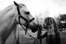 ♡ Horse love