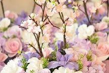 Flowers: Arrangements / Clusters of pure joy
