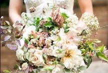 bouquets / by Miranda Hattie