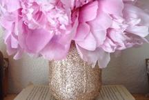 flowers + blooms / fleur / by Mae
