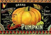 Everything Autumn / by Bernadette Calemmo Sanborn
