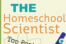 Homeschool Sites/Blogs We Love / The title of this board says it all.  These are must visit sites and blogs! / by CurrClick