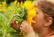 Nature Ideas / Exploring and learning in the great outdoors! / by CurrClick