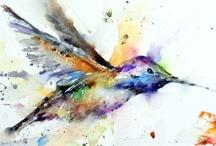 Hummingbird Haven / by Bernadette Calemmo Sanborn