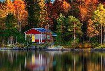 Photography - Autumn / by Diane Aldrich