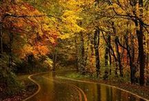 Welcome Fall / by Katzah -