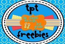 TPT Freebies / Flip Floppin' Through...3rd Grade Freebies
