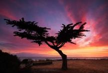 My Photos / I'm a San Francisco-based travel and landscape photographer.