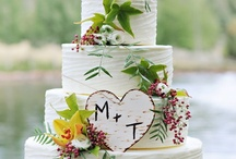 Morgans Wedding / by Lacy Baines