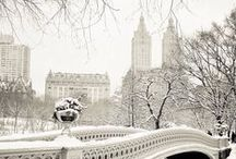 Winter Wonderland / by Nikki Campbell