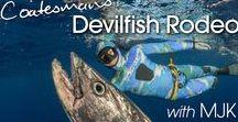 Spearfishing Dogtooth Tuna / Spearfishing Dog tooth Tuna with Coatesman