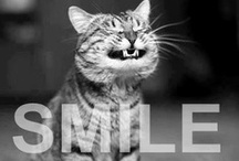 {Smile} / by Abby Knox