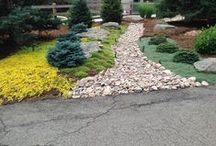 Softscapes / Plants used in Glacier View Landscape's Designs.
