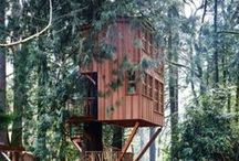 treehouse and cabin ideas / Ideas for a treehouse, and fun cabin interior decorating ideas / by Kate Reuschel