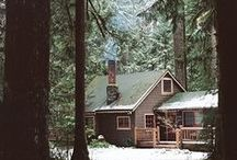 home underneath the trees / a wish: home in the woods, under the old pine trees, where squirrels make mossy nests. home filled with woodland treasures. @wildwoodgatherer