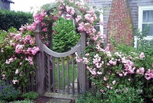 Garden—Gates & Arches / by Terri Mobley