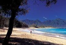 Maui Snorkeling / Provided by HawaiiActive.com, Hawaii's finest Activities, Tours & Fun Things To Do on Oahu, Maui, Kauai and the Big Island!