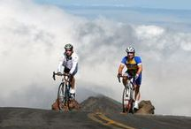 Maui Downhill Bike Ride / Provided by HawaiiActive.com, Hawaii's finest Activities, Tours & Fun Things To Do on Oahu, Maui, Kauai and the Big Island!