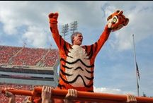 Clemson Tigers! / by Elliot Beane