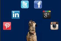 Social media / Harvey & Hugo offer Social Media Marketing services throughout the North East, from our Darlington and Newcastle based offices.