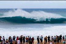 Hawaii Surf Forecast & News / Provided by HawaiiActive.com, Hawaii's finest Activities, Tours & Fun Things To Do on Oahu, Maui, Kauai and the Big Island!