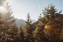 Oregon/California/Colorado / by Camille Kern