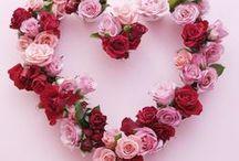 Valentinstag ♥ Two for Fashion / Der Valentinstag ist einer der romantischsten Tage im Jahr an dem du die Möglichkeit hast deinem Liebsten/ deiner Liebsten noch einmal zu zeigen, wie gern du ihn/ sie hast ♥ In diesem Board findet ihr tolle Inspirationen rund um das Thema Valentinstag.