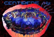 Album Art / by MTV Hive
