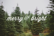 -most wonderful time of the year- / by Morgan Kertel