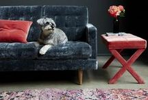 COLLABS / Abigail Ahern/EDITION at Debenhams. Abigail Ahern for sofa.com. / by Abigail Ahern