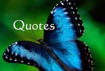 Quotes and Inspiration / Motivational quotes and inspirational themes to brighten your day