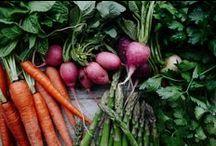 Favorite Food Blogs / Some of my favorite food/recipe blogs & websites.