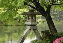 "Japanese Gardens / Indoor (庭, ""niwa"") and outdoor (日本庭園, ""nihon teien"") Japanese gardens around the world, in all their tranquil, beautiful glory. Includes all 7 major types of Japanese gardens -- pond (池泉园, chisen-shoyū-teien), paradise (净土庭院, jōdo), zen/dry rock (枯山水, karesansui), tea (茶庭, roji), promenade (回遊式庭園, kaiyū-shiki-teien), courtyard (壺庭, tsubo-niwa), and hermitage gardens (庵の庭園, an no teien)."