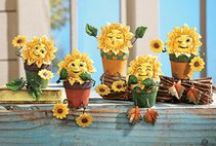 Everything Sunflowers / This cheerful flower is very versatile when it comes to decorating! Add sunflower decor to your country themed decor, your Autumn or Spring decor, in your garden or in your home! / by Collections Etc.
