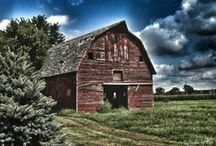 Barns I Love / by Michele Caine