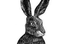 Illustrate : Illustrer / #illustration #drawings