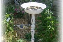 Birds and more / Birds, bird feeders and their habits.   Ways to attack birds to your back yard.  Creating bird feeders.  / by Jennifer Barger