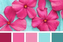 Colors: Favorite Palettes