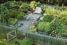 design obsessions (v. gardens)