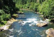 My Oregon / by Jody Snyder