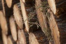 》 Meubles en bois français 《 / Gautier se sont des meubles français produits avec du bois français. Gautier s'approvisionne en bois français, dans un rayon de 300 km autours de ses sites de production, afin de limiter son impact sur l'environnement.  / by Gautier