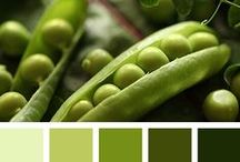 Color Palettes / Images with gorgeous color palettes