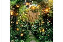 garden / by Katie Pedwell