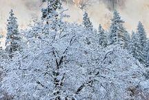 Winter / by Brittney Huff