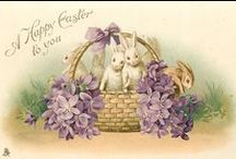 Easter Bunny / by Tammy Pritchard