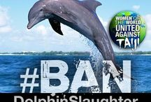 Women of the World United Against Taiji / Women of the world united against the roundup, slaughter and sale of dolphins and small whales in the Taiji Cove of Japan. Find us on Facebook and Twitter. #wowvstaiji