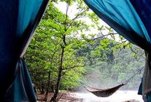 Camping / by Christine